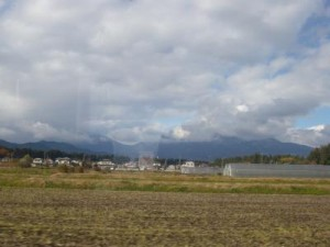 20101118-1